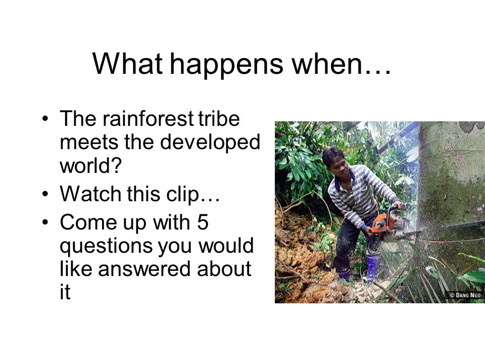 What happens when… The rainforest tribe meets the developed world.