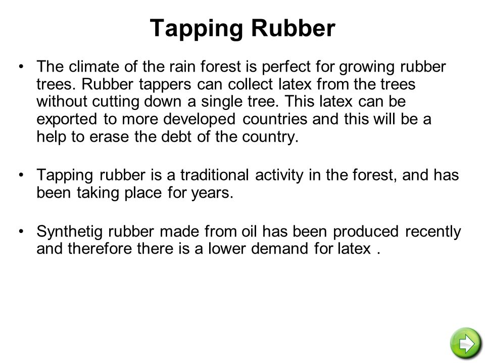 Solar Panels Having already studied the rain forest, you are aware that the forest receives much sunshine daily.