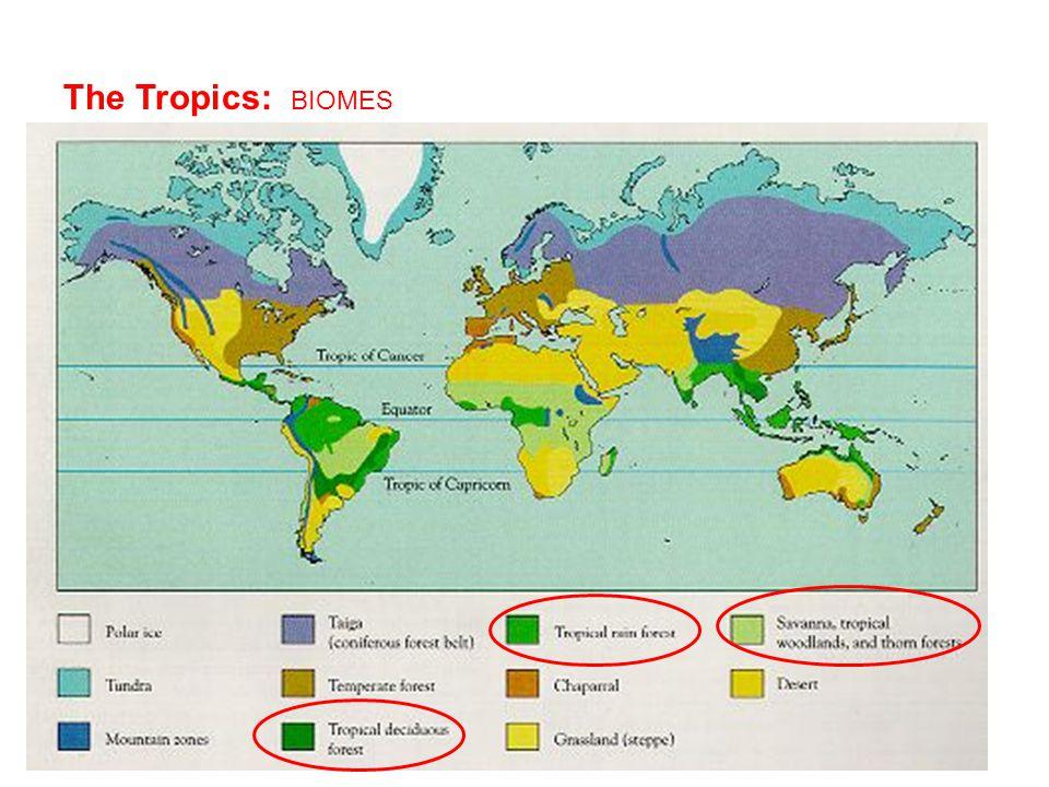 The Tropics: BIOMES
