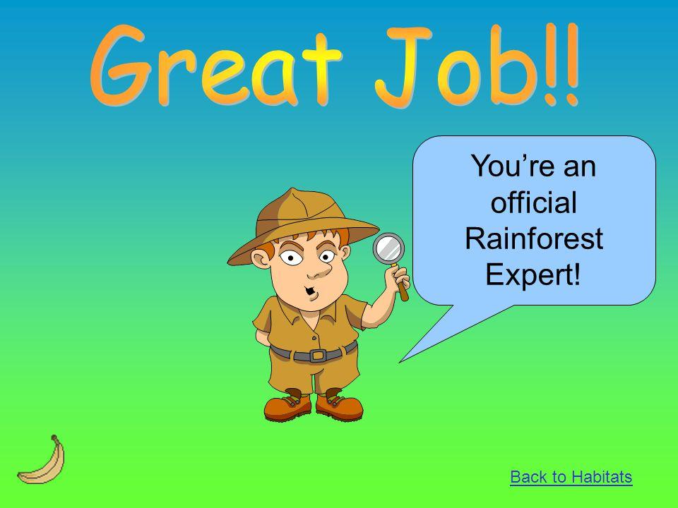 You're an official Rainforest Expert! Back to Habitats