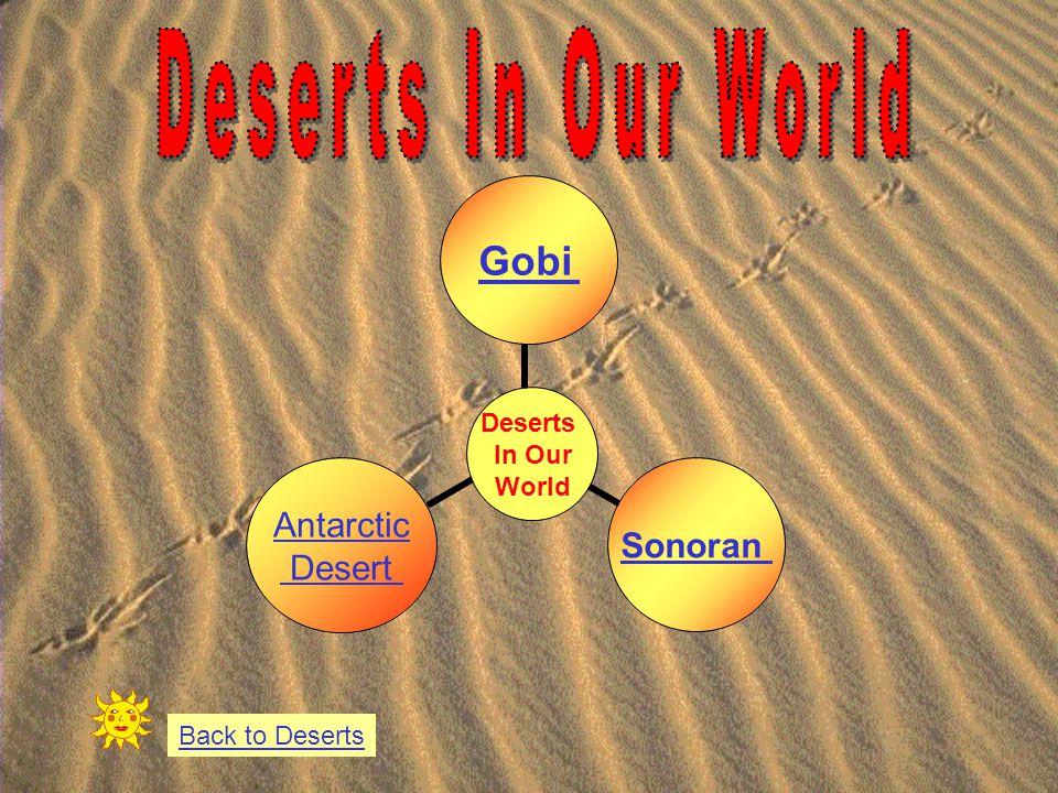 Deserts In Our World GobiSonoran Antarctic Desert Back to Deserts