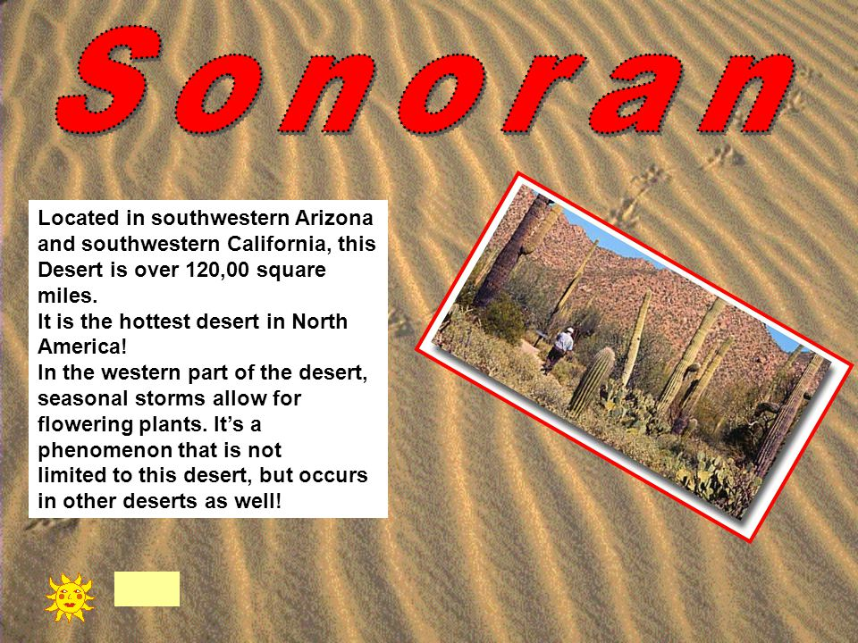 Located in southwestern Arizona and southwestern California, this Desert is over 120,00 square miles. It is the hottest desert in North America! In th