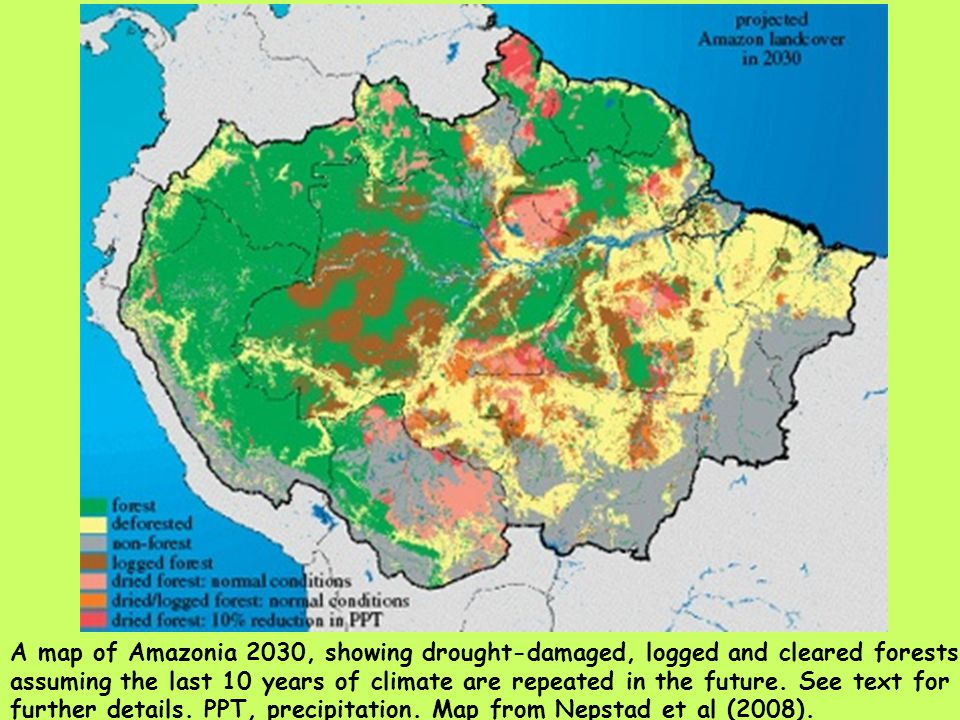 A map of Amazonia 2030, showing drought-damaged, logged and cleared forests assuming the last 10 years of climate are repeated in the future. See text