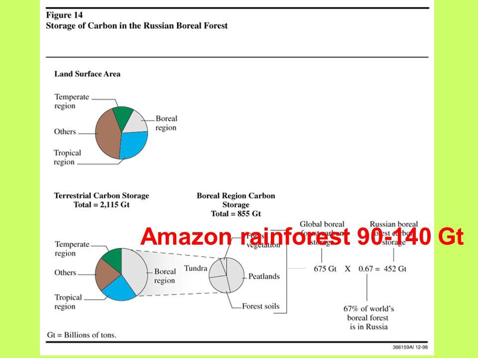 Amazon rainforest 90-140 Gt