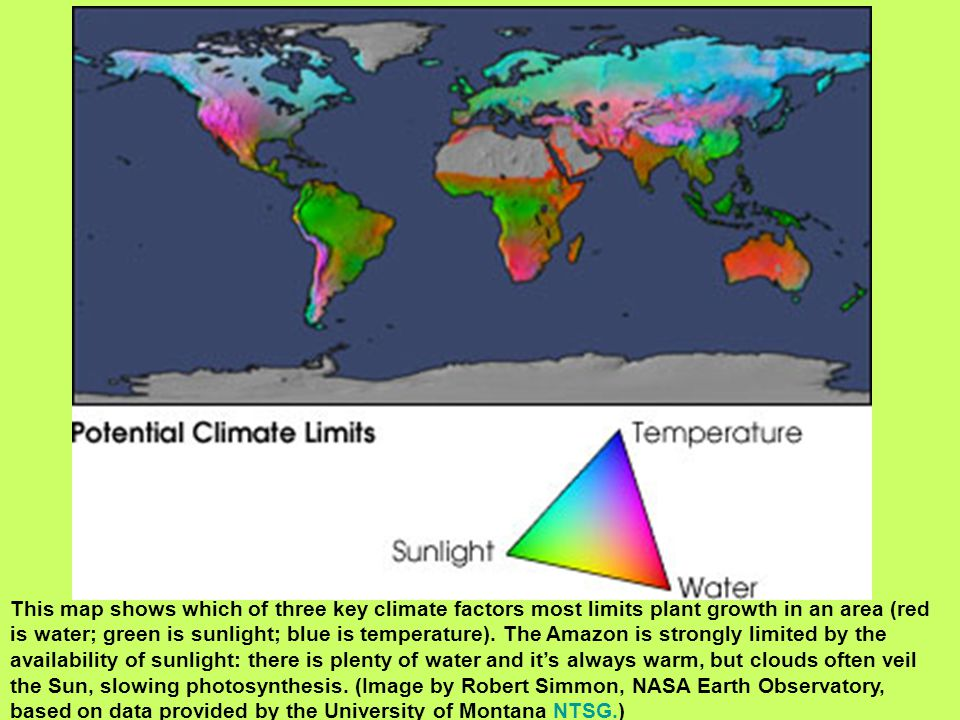 This map shows which of three key climate factors most limits plant growth in an area (red is water; green is sunlight; blue is temperature).