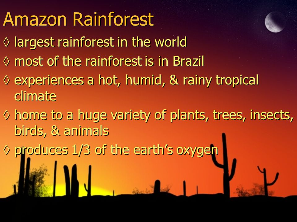 Amazon Rainforest ◊largest rainforest in the world ◊most of the rainforest is in Brazil ◊experiences a hot, humid, & rainy tropical climate ◊home to a huge variety of plants, trees, insects, birds, & animals ◊produces 1/3 of the earth's oxygen ◊largest rainforest in the world ◊most of the rainforest is in Brazil ◊experiences a hot, humid, & rainy tropical climate ◊home to a huge variety of plants, trees, insects, birds, & animals ◊produces 1/3 of the earth's oxygen