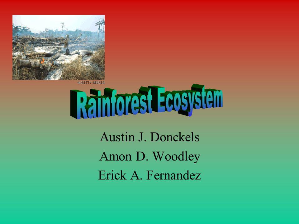 Austin J. Donckels Amon D. Woodley Erick A. Fernandez
