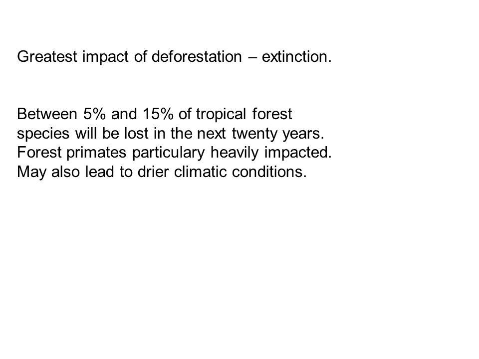 Greatest impact of deforestation – extinction.