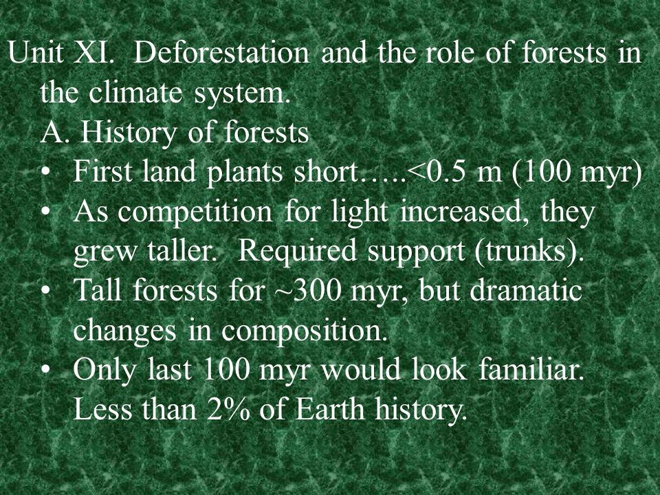 Unit XI. Deforestation and the role of forests in the climate system.