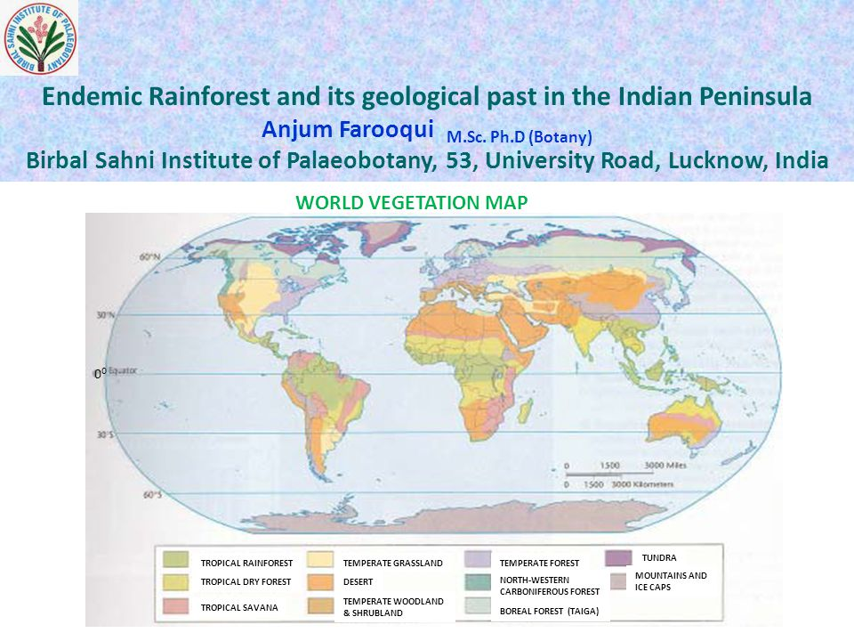Endemic Rainforest and its geological past in the Indian Peninsula Anjum Farooqui M.Sc. Ph.D (Botany) Birbal Sahni Institute of Palaeobotany, 53, Univ