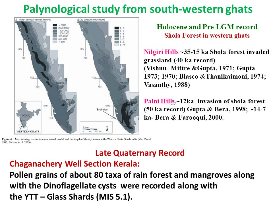 Late Quaternary Record Chaganachery Well Section Kerala: Pollen grains of about 80 taxa of rain forest and mangroves along with the Dinoflagellate cysts were recorded along with the YTT – Glass Shards (MIS 5.1).