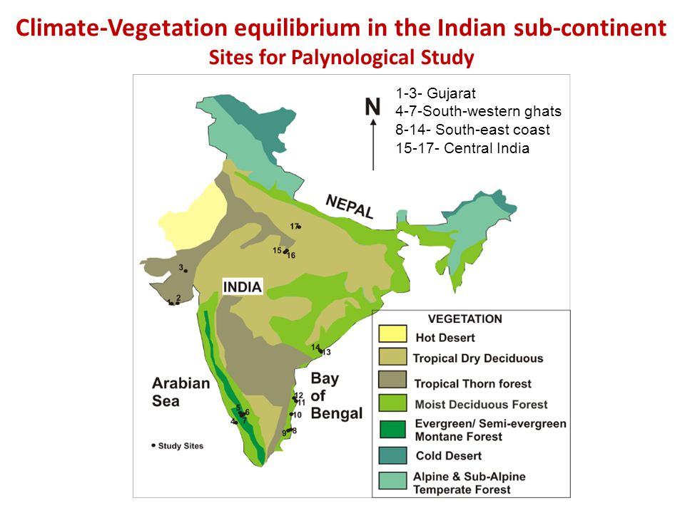 Climate-Vegetation equilibrium in the Indian sub-continent Sites for Palynological Study 1-3- Gujarat 4-7-South-western ghats 8-14- South-east coast 15-17- Central India