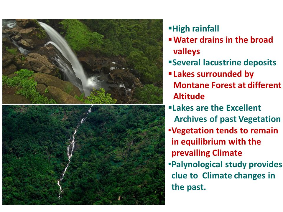  High rainfall  Water drains in the broad valleys  Several lacustrine deposits  Lakes surrounded by Montane Forest at different Altitude  Lakes a