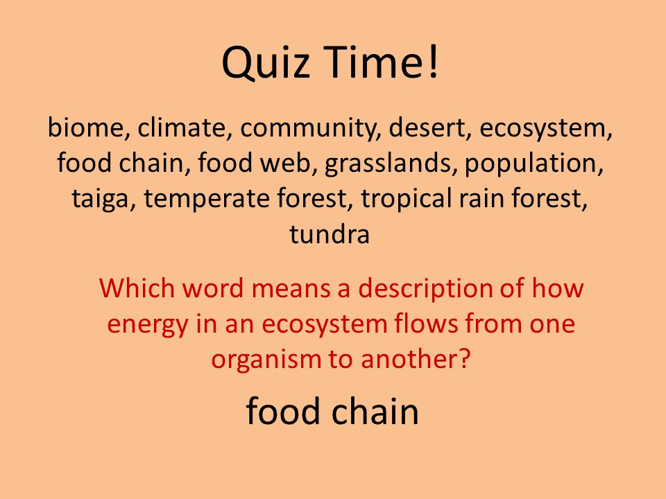 Quiz Time! biome, climate, community, desert, ecosystem, food chain, food web, grasslands, population, taiga, temperate forest, tropical rain forest,