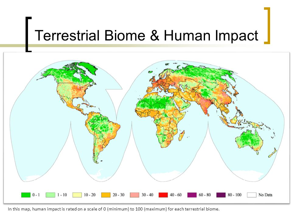 Terrestrial Biome & Human Impact In this map, human impact is rated on a scale of 0 (minimum) to 100 (maximum) for each terrestrial biome.