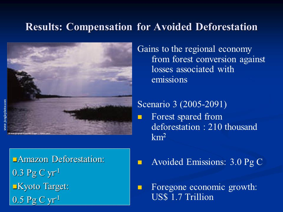 Results: Compensation for Avoided Deforestation Gains to the regional economy from forest conversion against losses associated with emissions Scenario 3 (2005-2091) Forest spared from deforestation : 210 thousand km 2 Avoided Emissions: 3.0 Pg C Foregone economic growth: US$ 1.7 Trillion www.junglephotos.com Amazon Deforestation: Amazon Deforestation: 0.3 Pg C yr -1 Kyoto Target: Kyoto Target: 0.5 Pg C yr -1