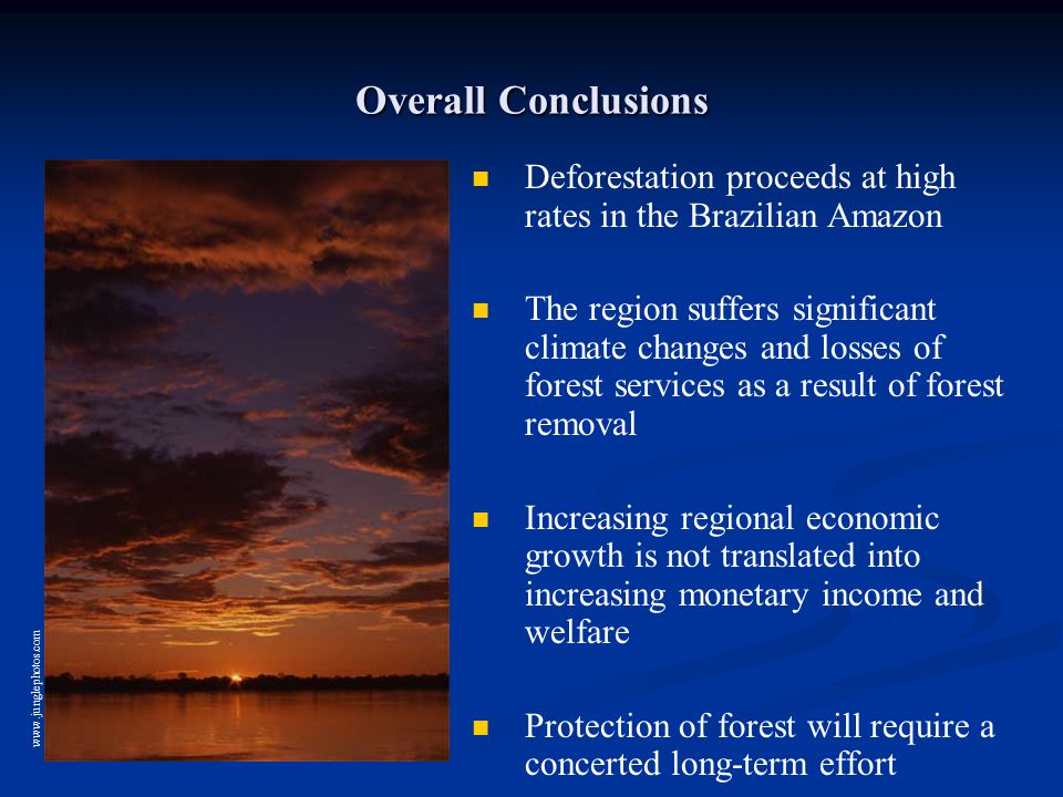 Overall Conclusions Deforestation proceeds at high rates in the Brazilian Amazon The region suffers significant climate changes and losses of forest services as a result of forest removal Increasing regional economic growth is not translated into increasing monetary income and welfare Protection of forest will require a concerted long-term effort www.junglephotos.com