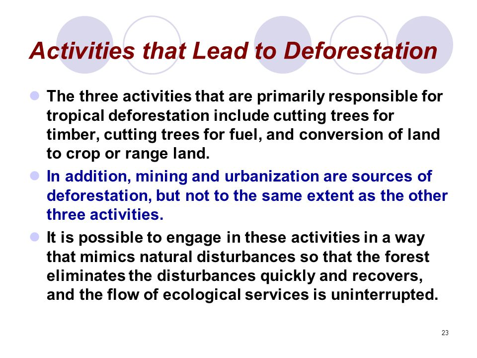 23 Activities that Lead to Deforestation The three activities that are primarily responsible for tropical deforestation include cutting trees for timber, cutting trees for fuel, and conversion of land to crop or range land.