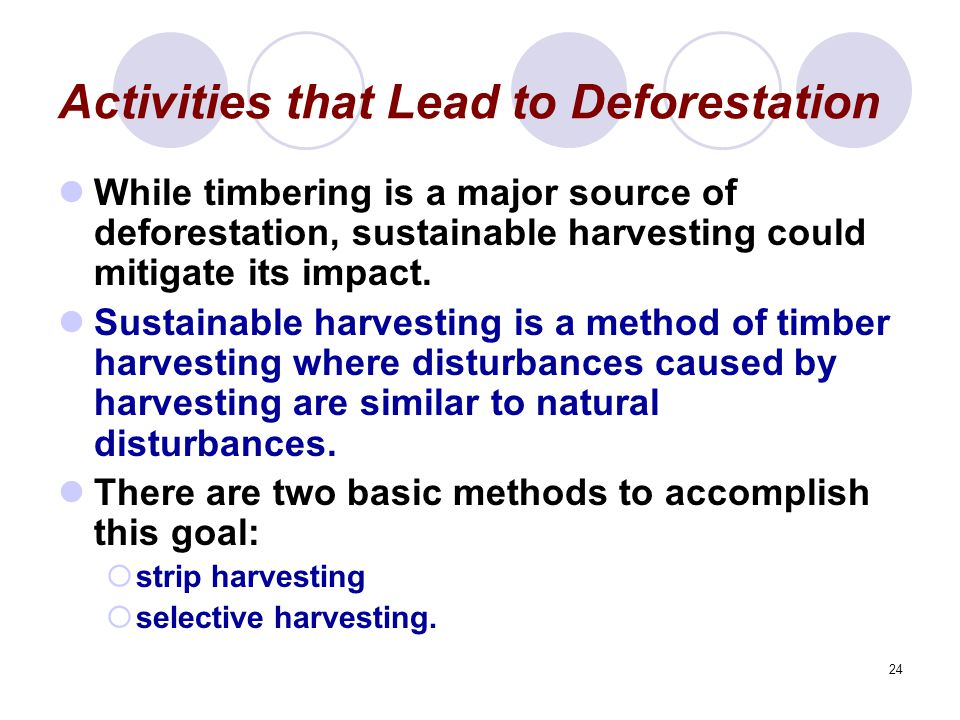 24 Activities that Lead to Deforestation While timbering is a major source of deforestation, sustainable harvesting could mitigate its impact.