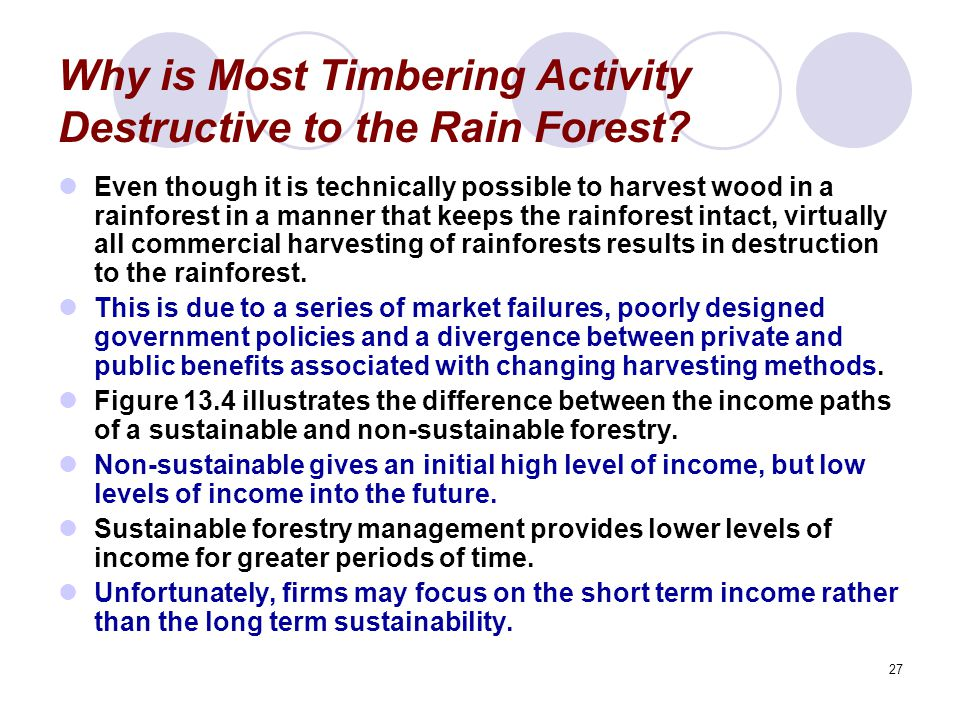 27 Why is Most Timbering Activity Destructive to the Rain Forest.