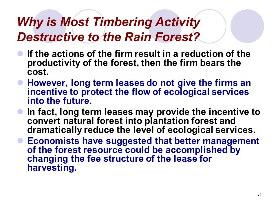 31 Why is Most Timbering Activity Destructive to the Rain Forest? If the actions of the firm result in a reduction of the productivity of the forest,