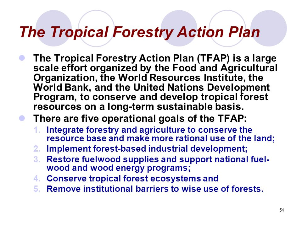 54 The Tropical Forestry Action Plan The Tropical Forestry Action Plan (TFAP) is a large scale effort organized by the Food and Agricultural Organizat