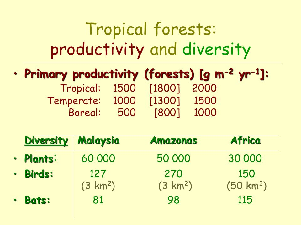 Phenology: Malaysian rainforest % of trees Triggers: degree of water stress and photoperiod.