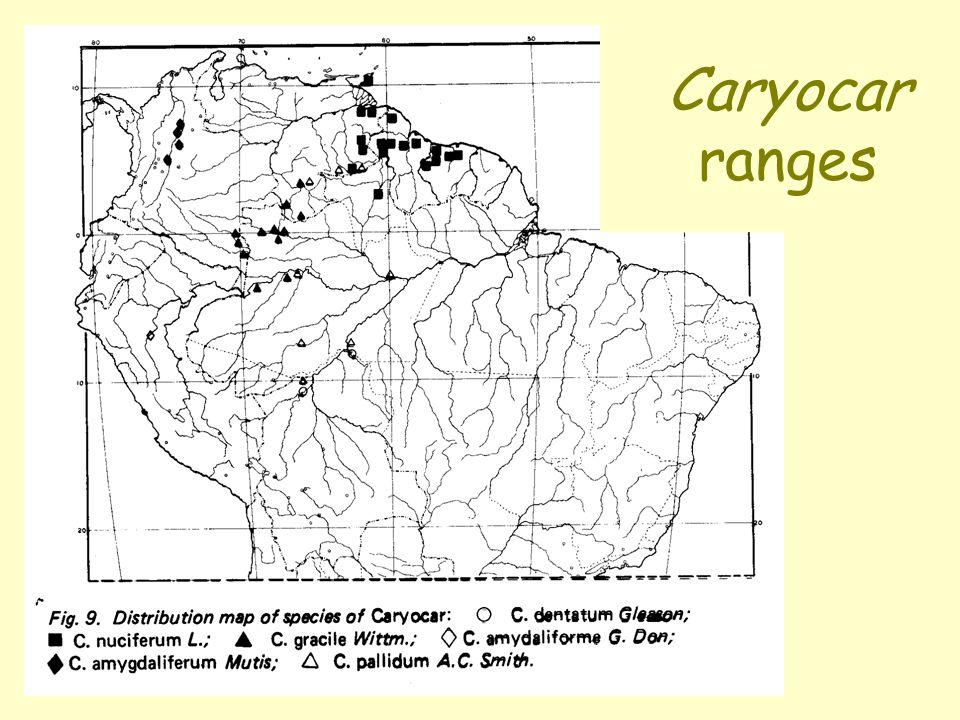 Caryocar ranges
