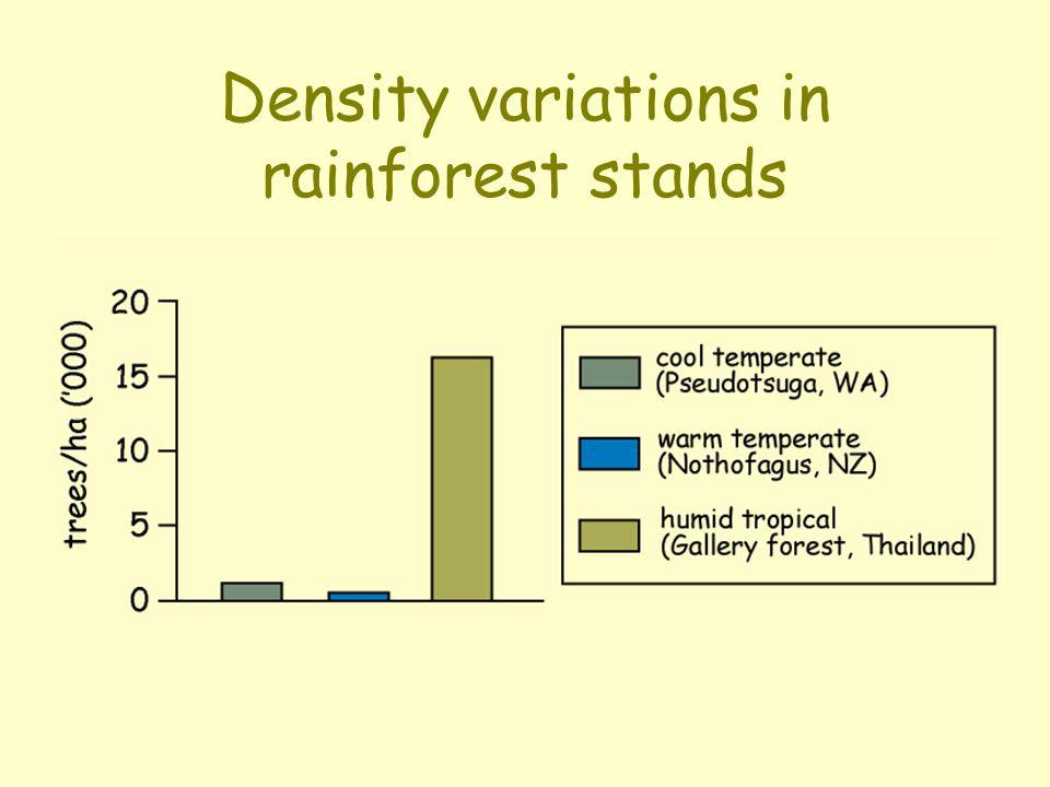 High stem density Characters: lots of small poles 'drip-tip' leaves thin bark Diversity: majority of trees are rare - densities <1/ha.