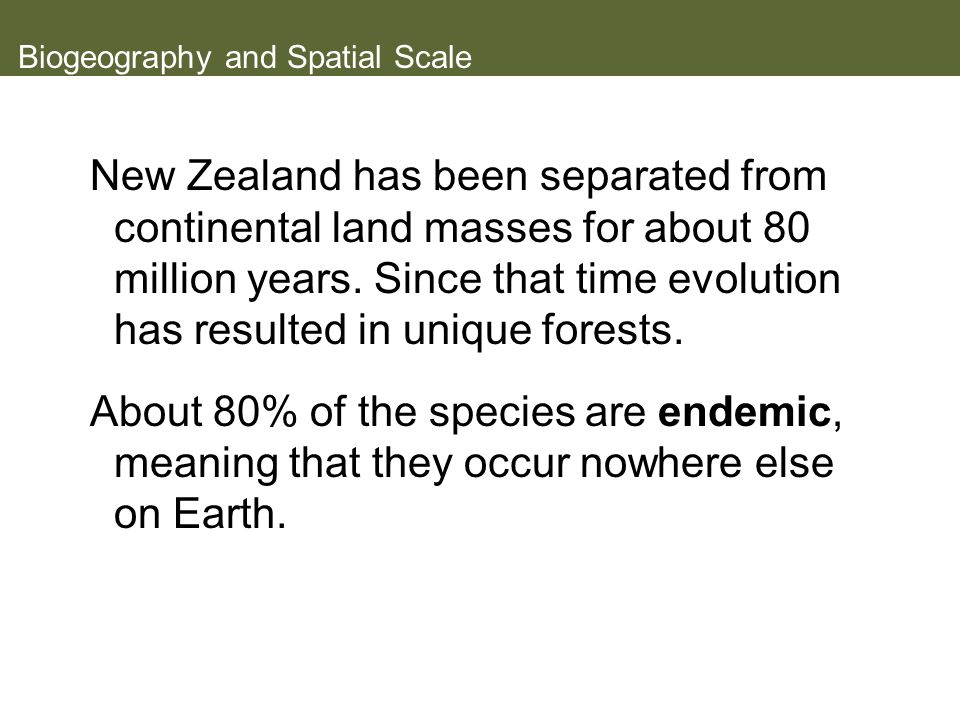 Biogeography and Spatial Scale New Zealand has been separated from continental land masses for about 80 million years.