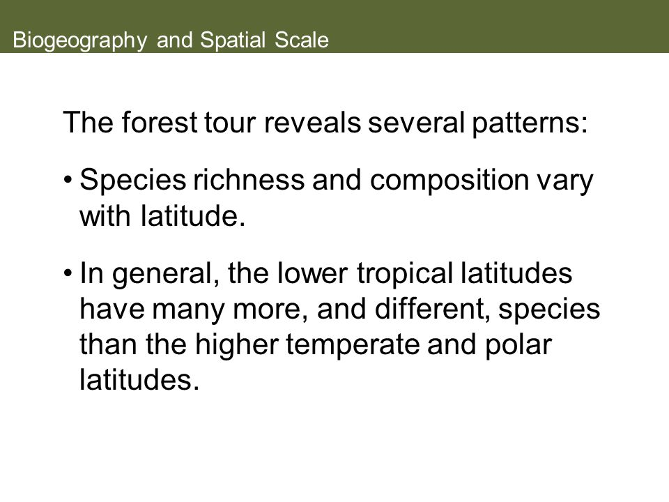 Biogeography and Spatial Scale The forest tour reveals several patterns: Species richness and composition vary with latitude.