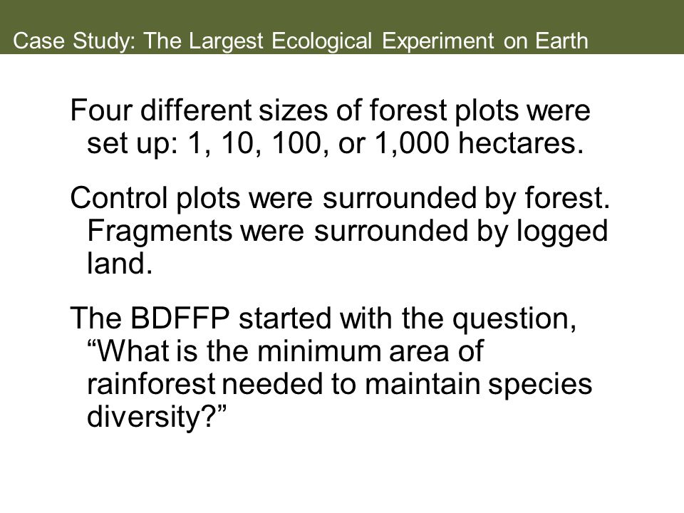 Case Study: The Largest Ecological Experiment on Earth Four different sizes of forest plots were set up: 1, 10, 100, or 1,000 hectares.