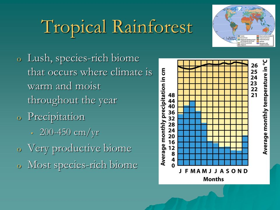 Tropical Rainforest o Lush, species-rich biome that occurs where climate is warm and moist throughout the year o Precipitation 200-450 cm/yr 200-450 c