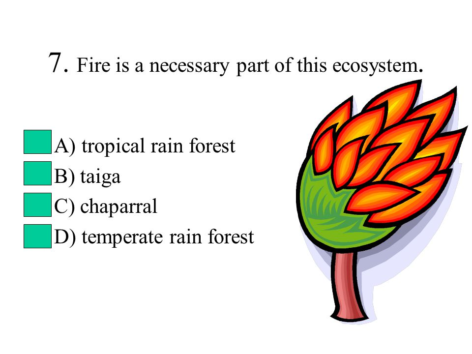 7. Fire is a necessary part of this ecosystem. A) tropical rain forest B) taiga C) chaparral D) temperate rain forest