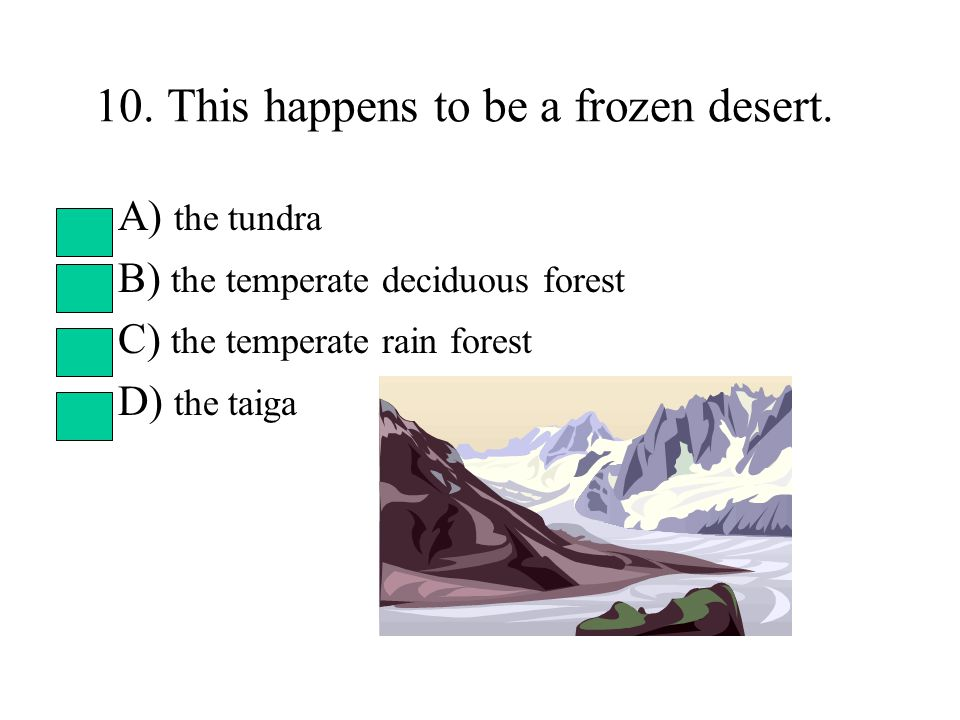 10. This happens to be a frozen desert. A) the tundra B) the temperate deciduous forest C) the temperate rain forest D) the taiga