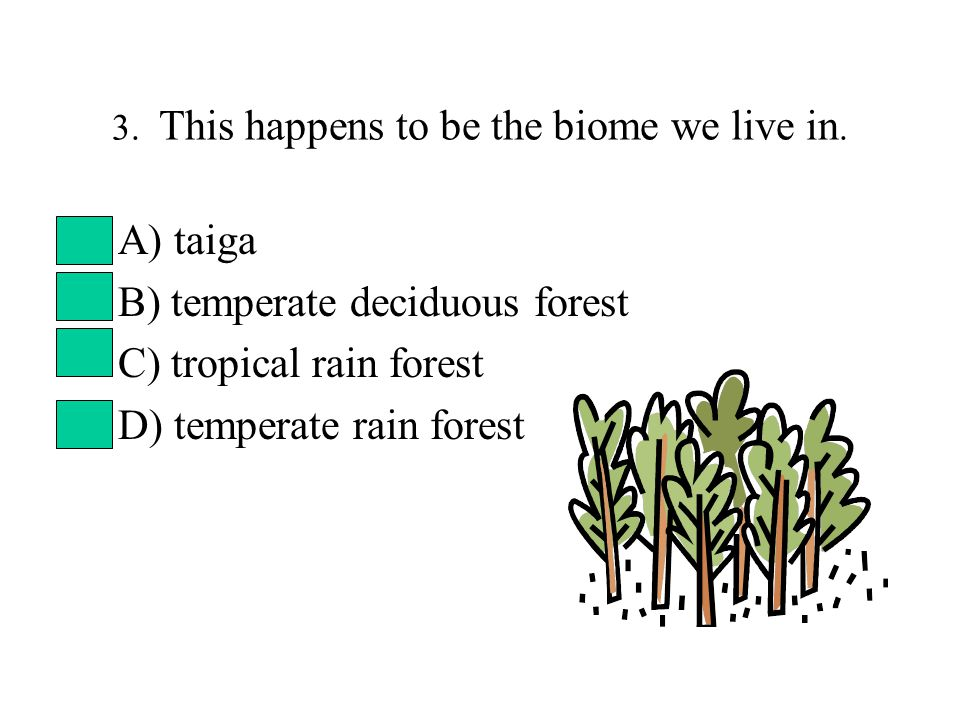 3. This happens to be the biome we live in. A) taiga B) temperate deciduous forest C) tropical rain forest D) temperate rain forest