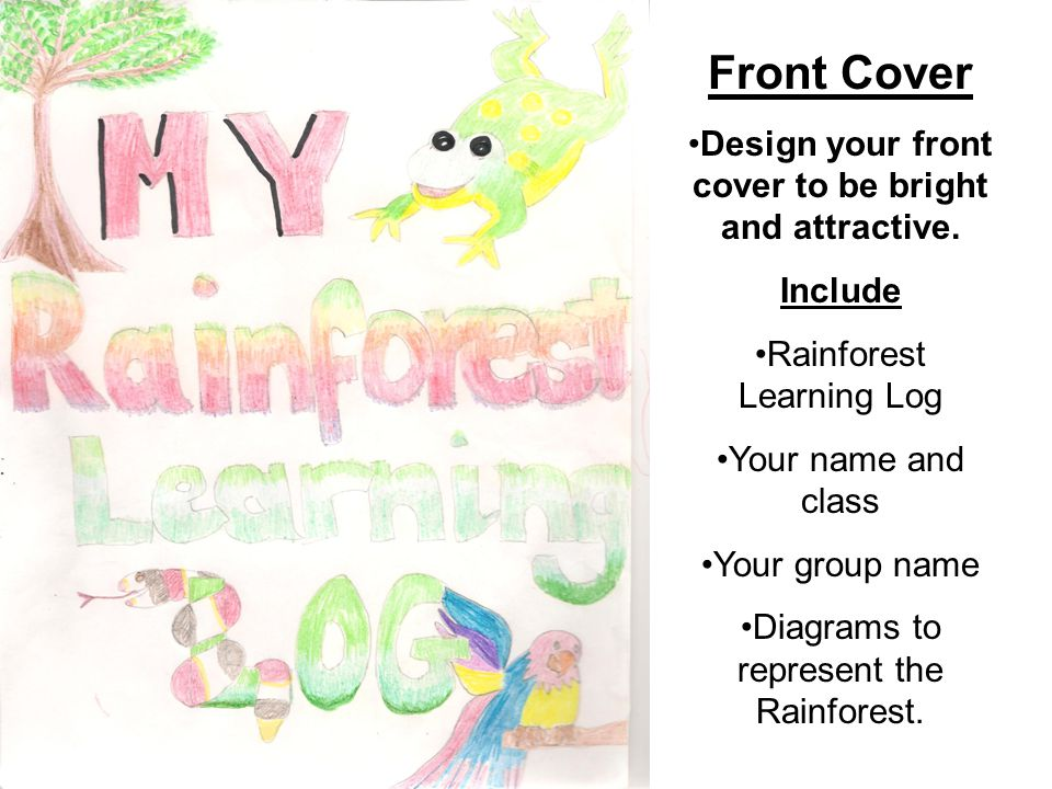 Front Cover Design your front cover to be bright and attractive. Include Rainforest Learning Log Your name and class Your group name Diagrams to repre