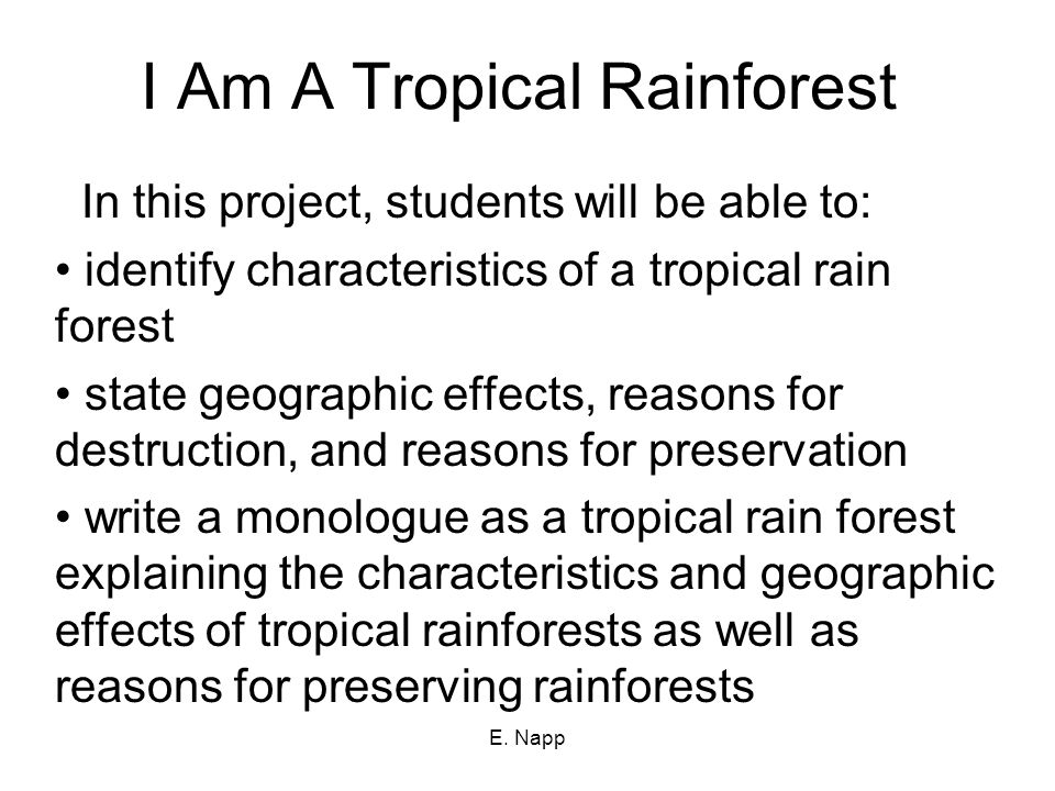 E. Napp A tropical rainforest is warm all year long. Yearly rainfall ranges from 80 to 400 inches.