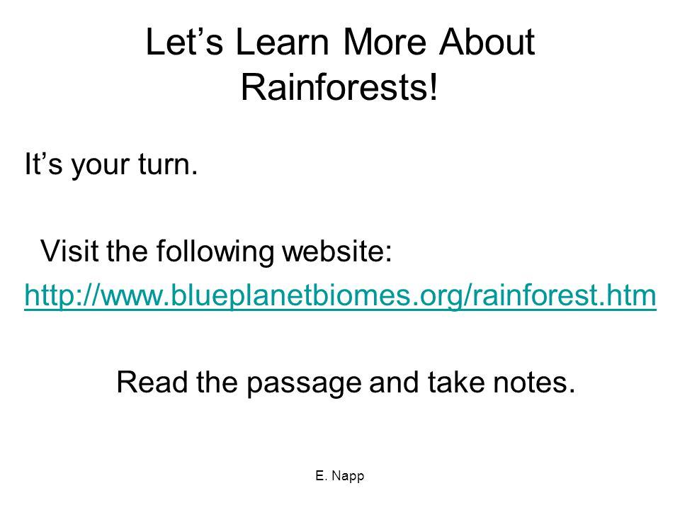 E. Napp Let's Learn More About Rainforests. It's your turn.