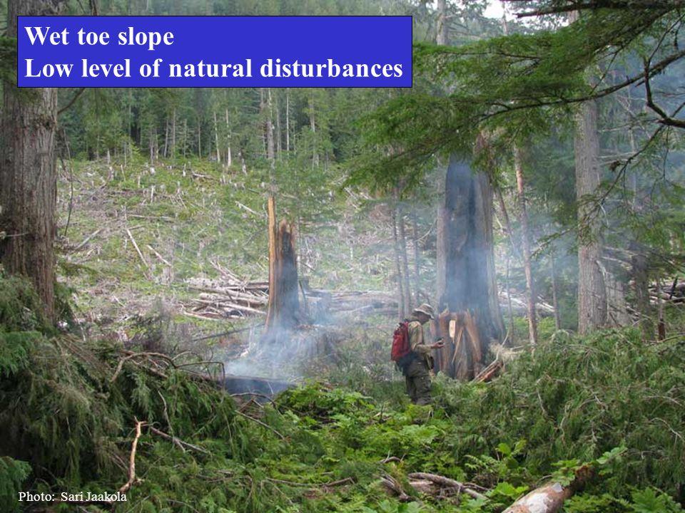 Wet toe slope Low level of natural disturbances Photo: Sari Jaakola