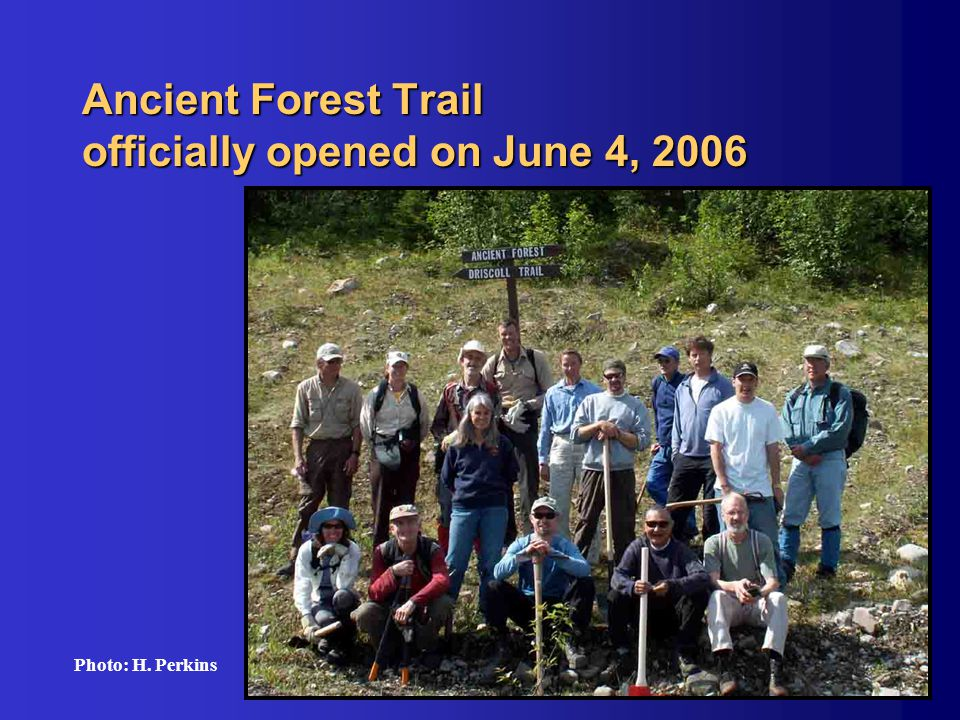 Ancient Forest Trail officially opened on June 4, 2006 Photo: H. Perkins