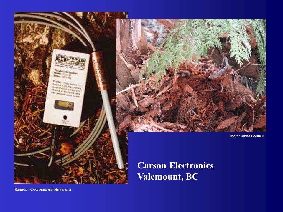 Carson Electronics Valemount, BC Photo: David Connell Sourece: www.carsonelectronics.ca
