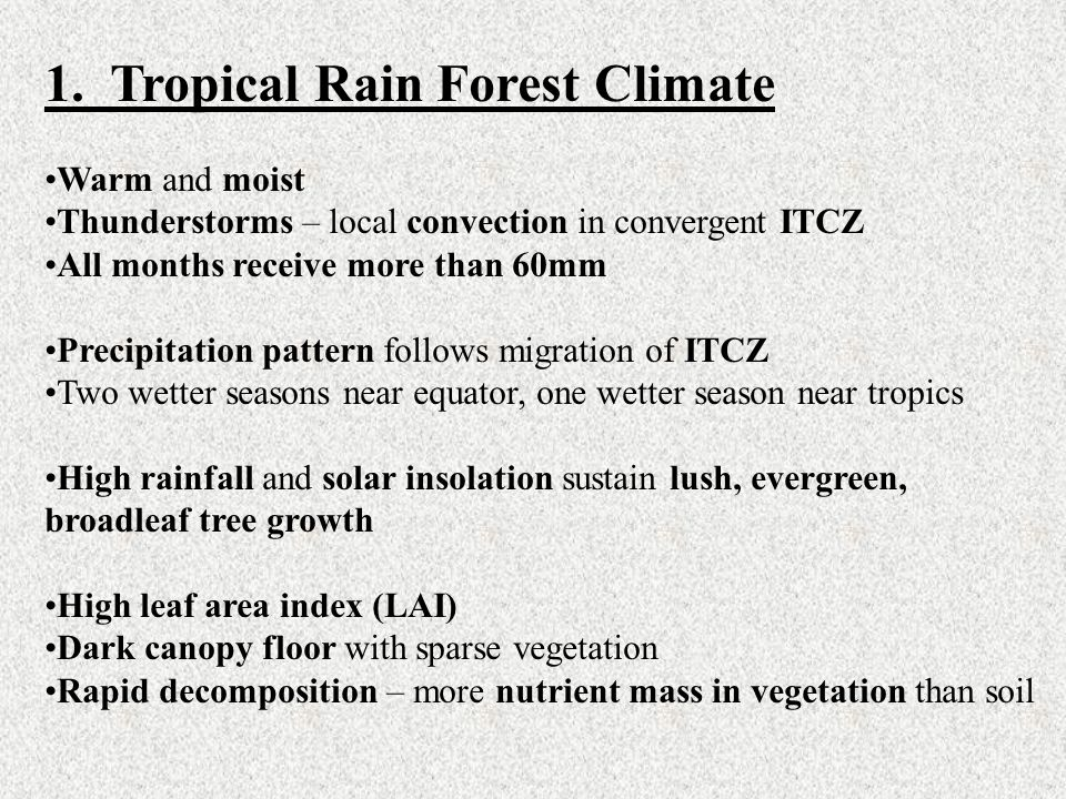 1. Tropical Rain Forest Climate Warm and moist Thunderstorms – local convection in convergent ITCZ All months receive more than 60mm Precipitation pat