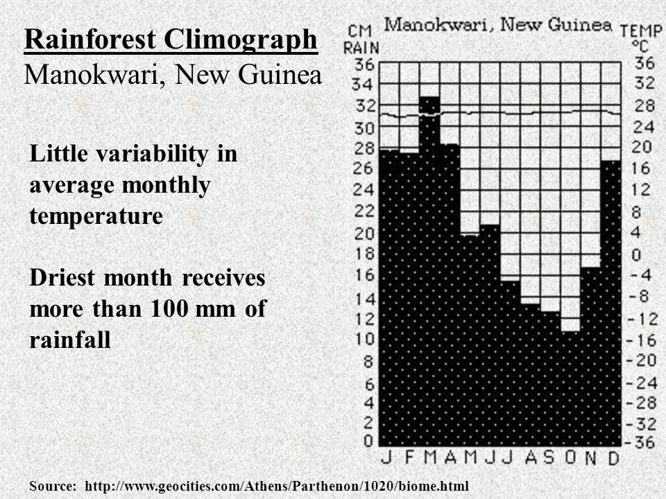 Rainforest Climograph Manokwari, New Guinea Little variability in average monthly temperature Driest month receives more than 100 mm of rainfall Sourc