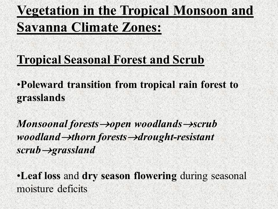 Vegetation in the Tropical Monsoon and Savanna Climate Zones: Tropical Seasonal Forest and Scrub Poleward transition from tropical rain forest to gras