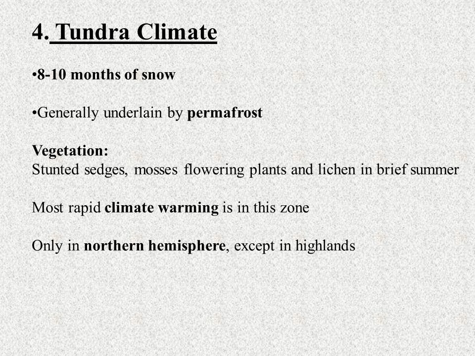 4. Tundra Climate 8-10 months of snow Generally underlain by permafrost Vegetation: Stunted sedges, mosses flowering plants and lichen in brief summer