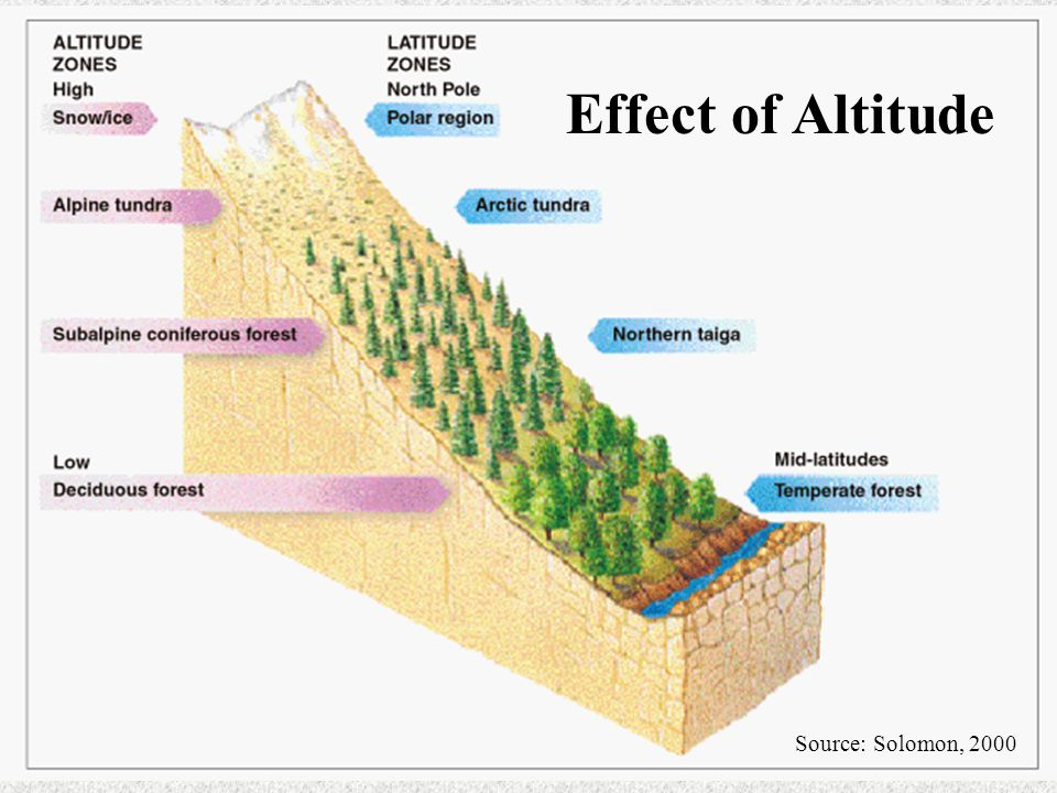 Source: Solomon, 2000 Effect of Altitude