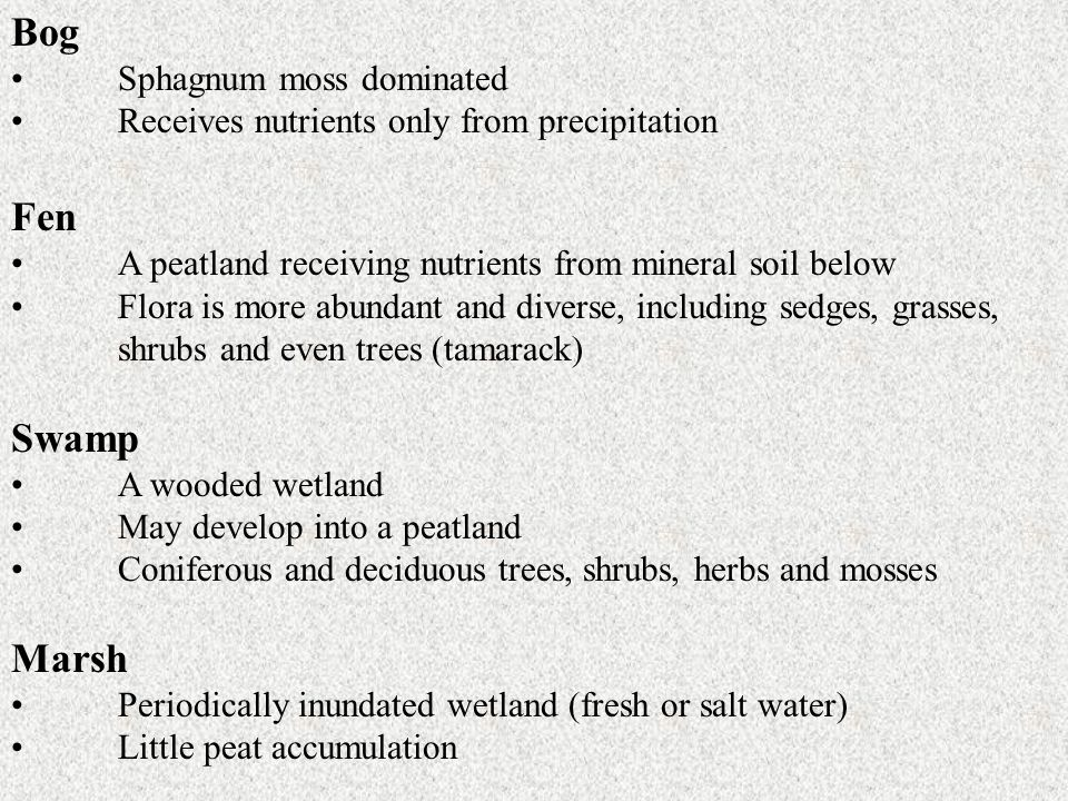 Bog Sphagnum moss dominated Receives nutrients only from precipitation Fen A peatland receiving nutrients from mineral soil below Flora is more abunda
