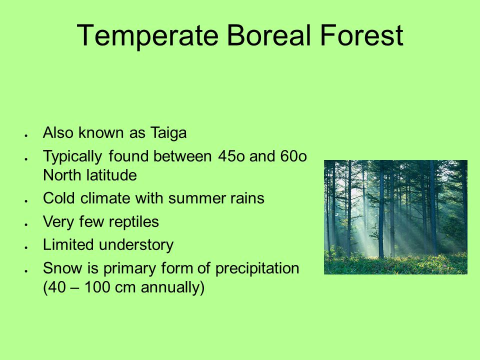 Temperate Boreal Forest  Also known as Taiga  Typically found between 45o and 60o North latitude  Cold climate with summer rains  Very few reptile