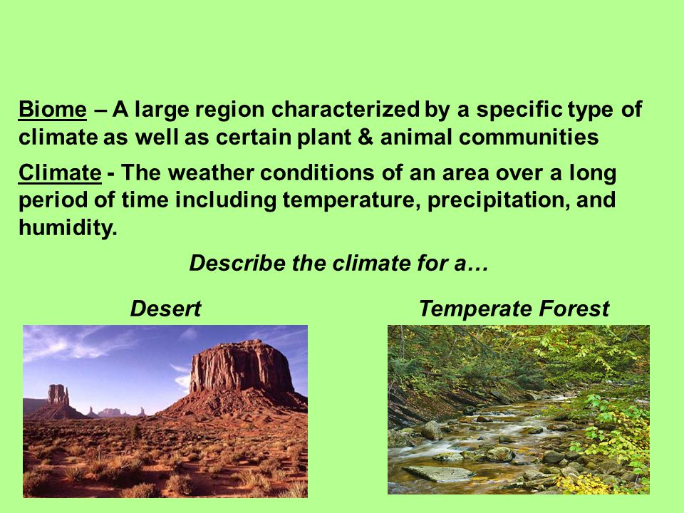 Biome – A large region characterized by a specific type of climate as well as certain plant & animal communities Climate - The weather conditions of a